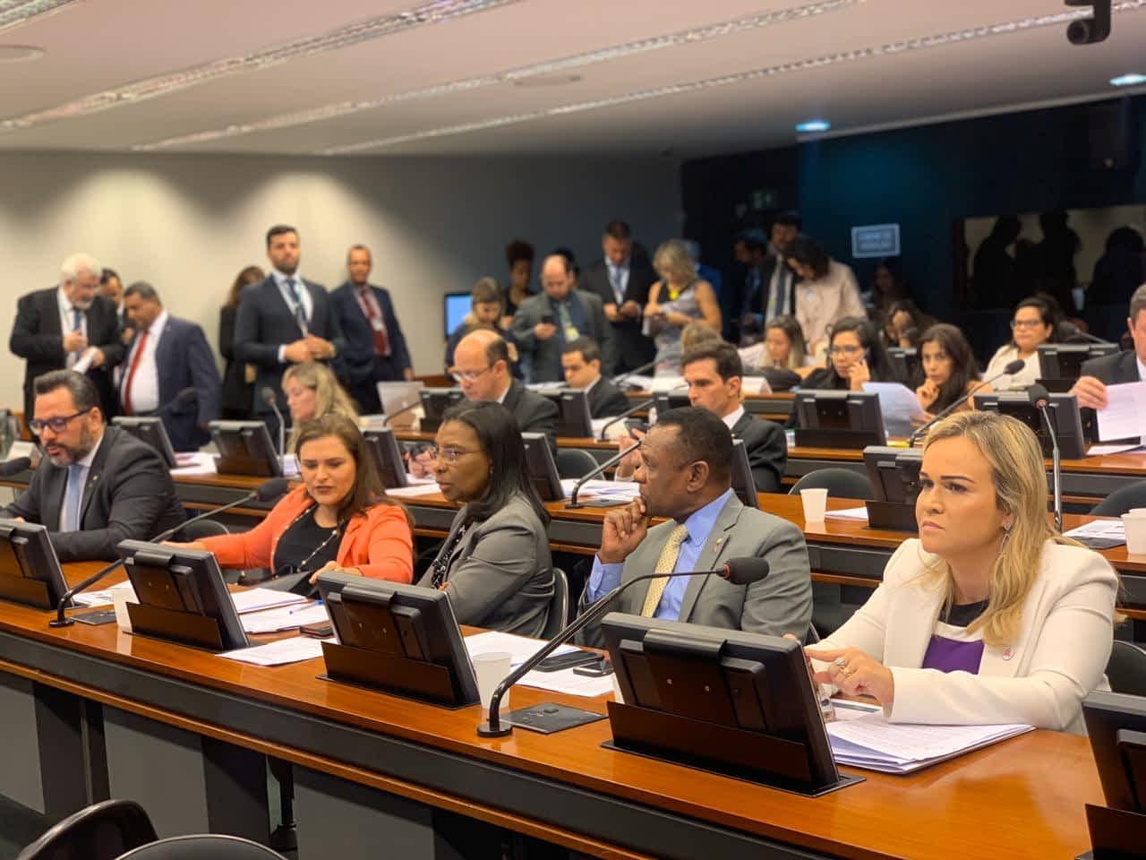 Rosangela Gomes na comissão